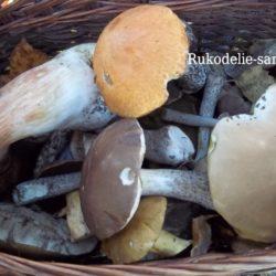 Совет — как использовать отходы грибов
