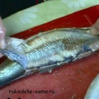 Рыба селёдка: чем полезна, рыбный день с  селёдкой.